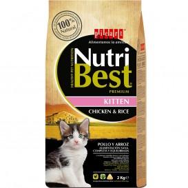 Kitten - Nutribest