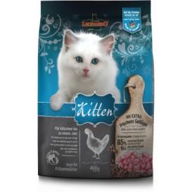 Kitten - Leonardo